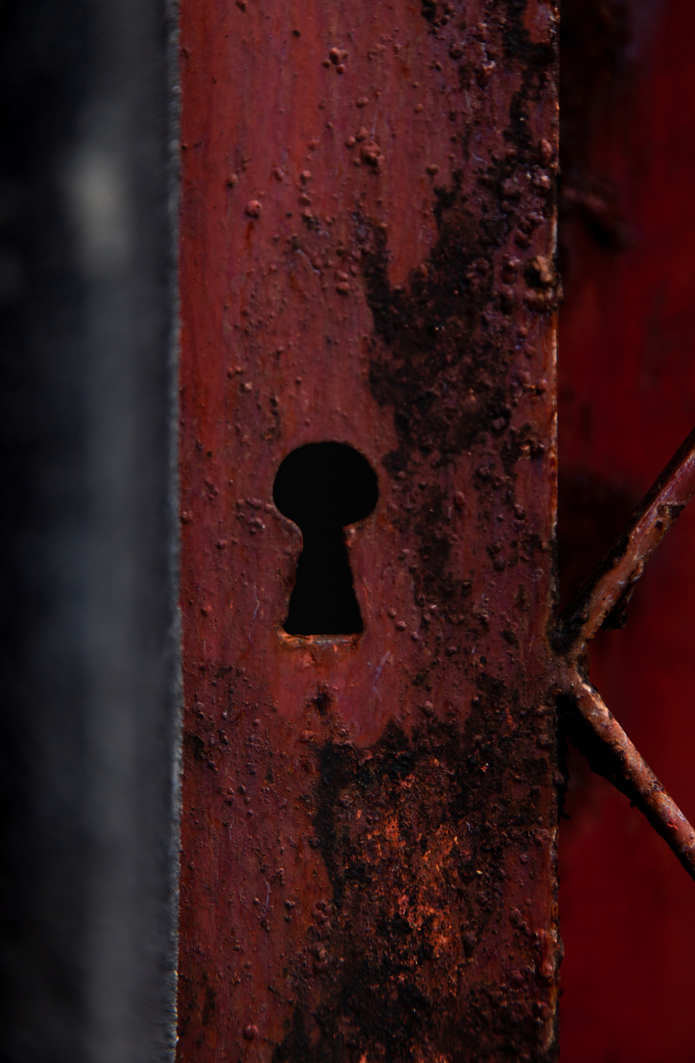 Network and Security Audits Assess Risk